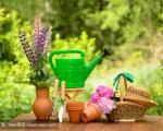 Horticultural Technology (urban horticulture)