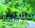 Landscape Technology