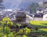 Rural Regional Development