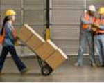 Logistics Management (undergraduate programme, starting from junior college level)